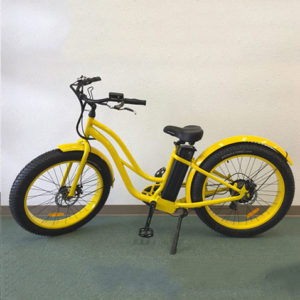 Our standard ELECTRIC FAT TIRE STEP-THROUGH BIKE rents out at $25 for 1 hour and $45 for 2 hours (290 lb weight limit)